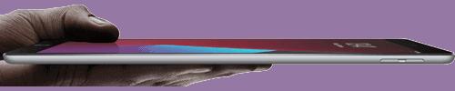 Display vom Apple iPad LTE (2020)